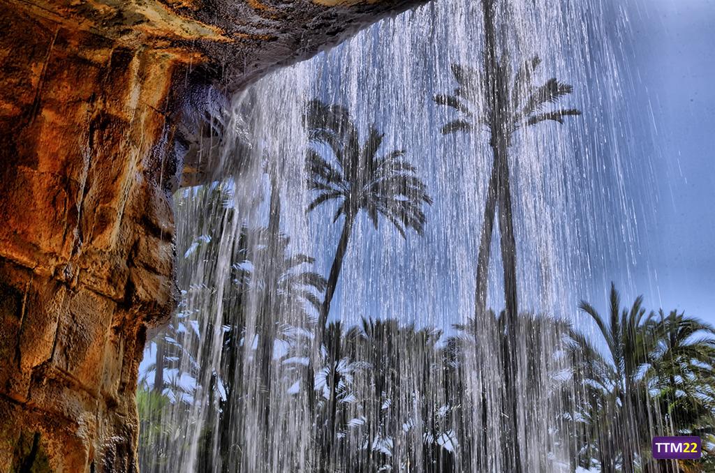 cascada-palmeral-alicante