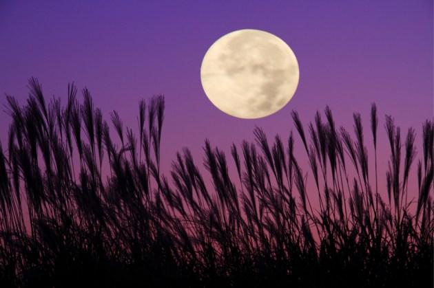 ロマンチックな満月