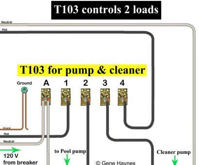 9 Most 2 Speed Pool Pump Wiring Diagrams Photos - Tone Tastic