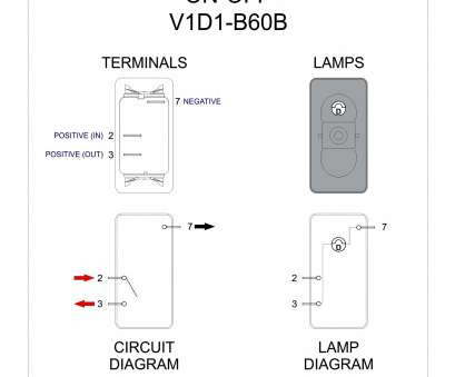 Dpst Rocker Switch Wiring Diagram Wiring Diagram