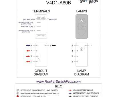 Spdt Switch Diagram Electric Wiring Diagram