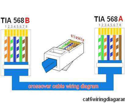 Utp 568a B Wiring Layout Wiring Diagram 2019