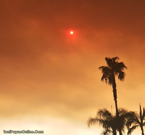Picture of the Red Sun in Los Angeles caused by the Sand Fire