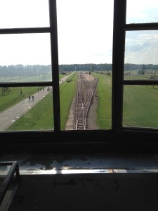 "The platform beside these tracks is where the ""Selection"" took place.  As people disembarked from the train, they were divided into two groups, those who could work--and would go on to endure a living hell--and those who were immediately sent to the gas chambers.  Families said goodbye on this platform, never to see each other again."