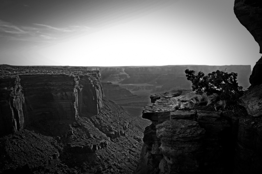 shafer-canyonn-black-and-white-r2