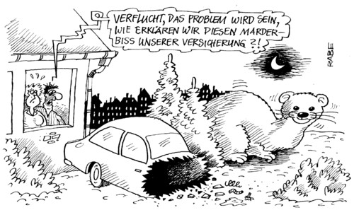 Marderbiss Auto Marderbiss By Rabe | Business Cartoon | Toonpool
