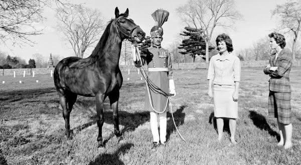 Vedovati Pisos sardar-um-dos-cavalos-mais-famosos-do-mundo