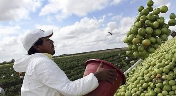 mexico entre os paises que mais trabalham no mundo