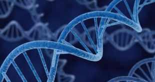 Top 10 maiores descobertas da medicina
