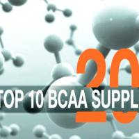 Best BCAAs - 2015's Top 10 Branch Chain Amino Acid Products