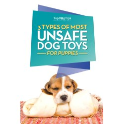 Small Crop Of Best Chew Toys For Puppies