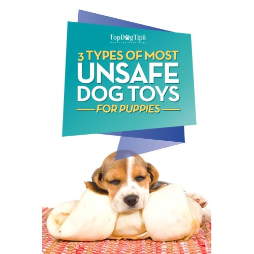 Medium Crop Of Best Chew Toys For Puppies