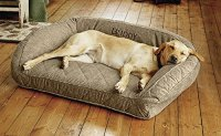 Top 15 Best Dog Beds for Large Dogs Reviews in 2017
