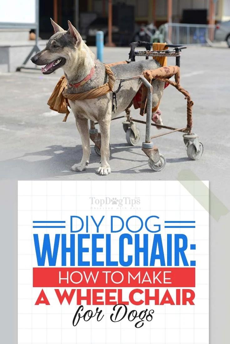 Large Of Diy Dog Wheelchair