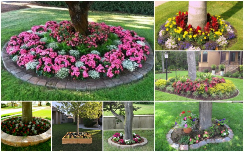 Flower Bed Designs 15 Eye-catching Flower Beds Around Trees You Need To See