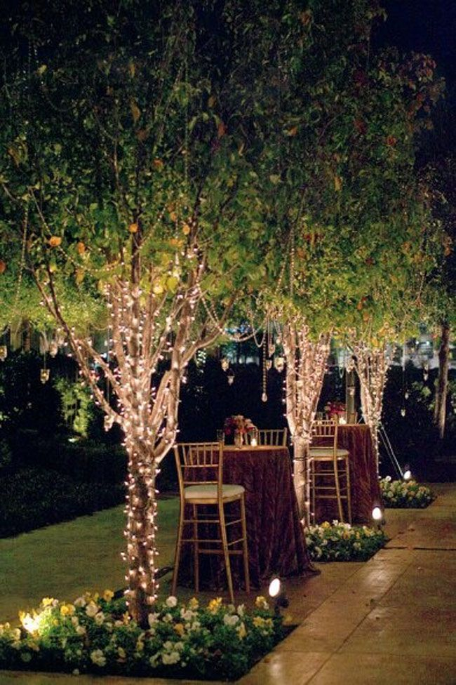 Ylighting Beautiful Backyard Tree Lighting Ideas That Will Fascinate You