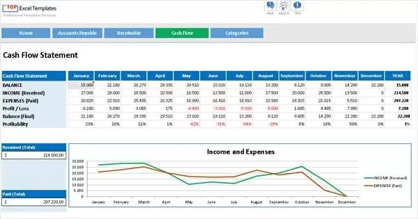Cash Flow + Accounts Payable Receivable - Professional Excel Template