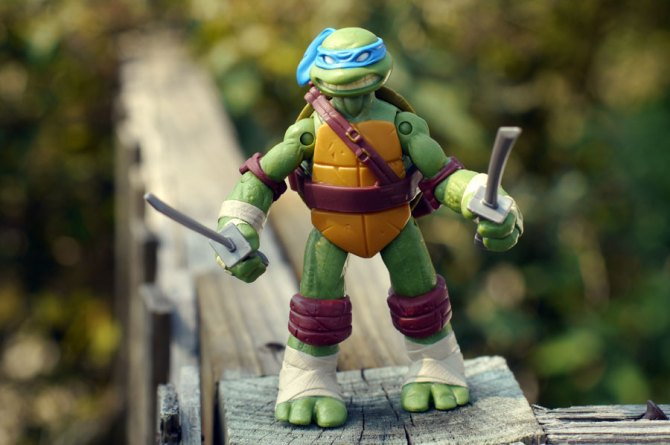 Nickelodeon Ninja Turtles Leonardo