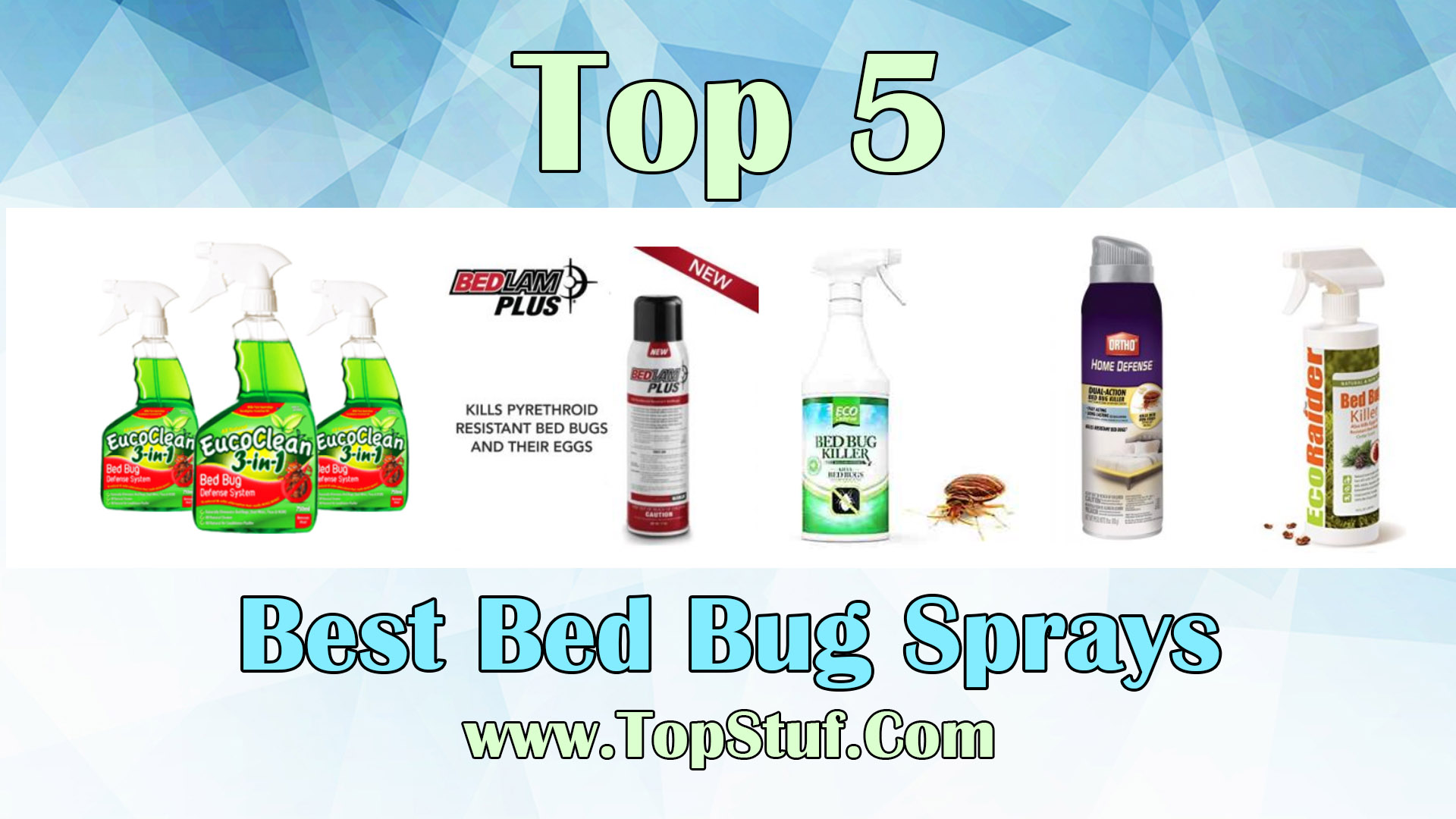 Sprays For Bed Bugs Top 5 Best Bed Bug Sprays Remove Irritating Bed Bugs With Ease