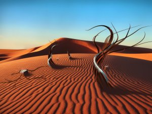 Top 10 Amazing Deserts In The World