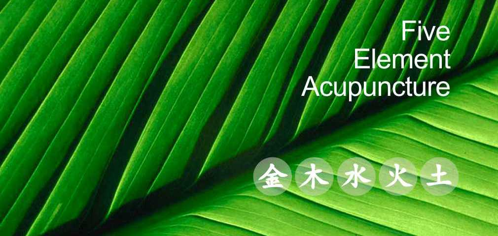 Five Element Acupuncture. The five elements, metal, wood, water, fire and earth.