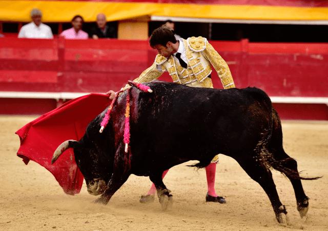 Cayetano Ortiz