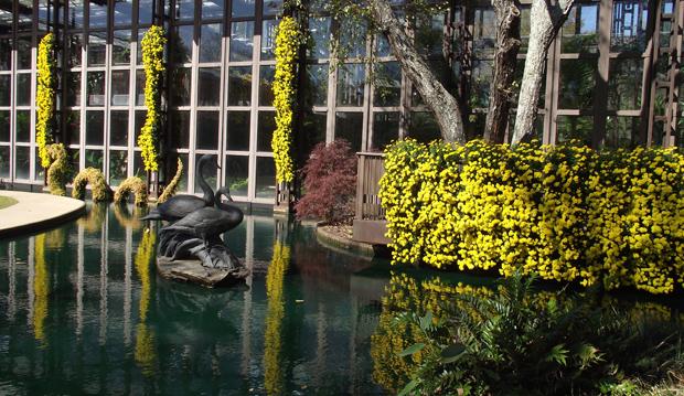 5 Reflecting Pool