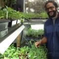 Damian in his greenhouse-web