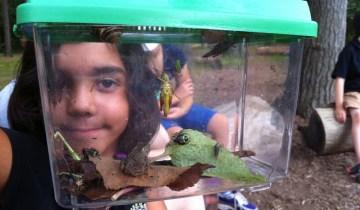kids holding bug catcher