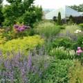 083c-Sunken-Garden-June-16