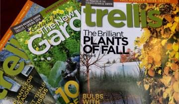 trelllis magazine covers