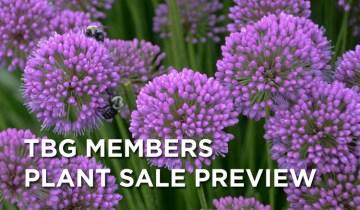 members_plantsale