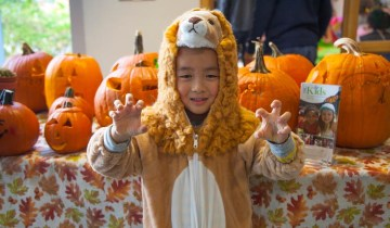 tbgkids halloween little tiger