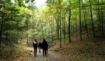 Hiking in a ravine_Toronto and Region Conservation - resized