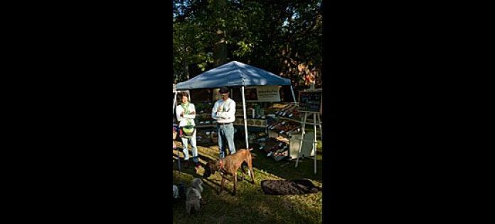 Some vendors bring along their pets and kids, adding to the friendly, family atmosphere.