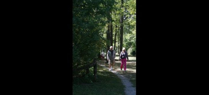 As a level 1 trail, walkers of all physical ability could participate.