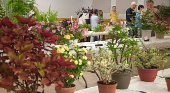 Visitors were treated to a blooming good show Sept. 11 at the Scarborough Garden and Horticultural Society's annual flower show, held at the Scarborough Village Community Centre.