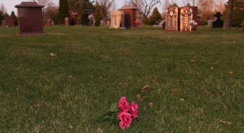 Flowers from a grave now lie strewn on graveless grass.