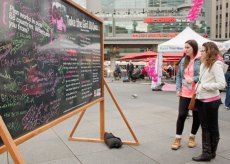 By the end of the event, the chalk board was filled with inspirational messages from Torontonians to young girls around the world.