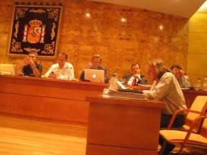 El portavoz de AcTÚa Torrelodones en el Pleno de Ordenanzas