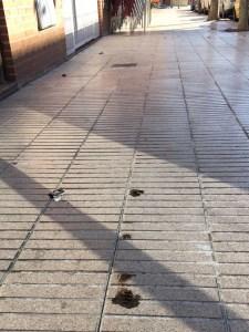 cacas-calle-torrelodones-1