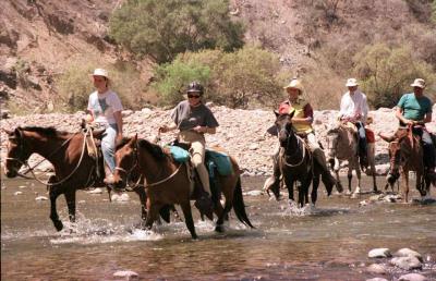 Horseback Riding Expeditions