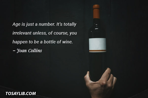 45 Sarcastic and Funny Wine Quotes - Tosaylib