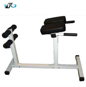 Roman Chair Total Fitness Outlet