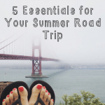 5 Road Trip Essentials