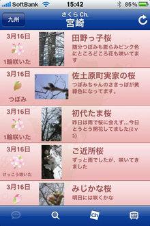 hanami_app_2.jpg