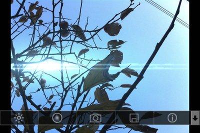 app_photo_lensflare_3.jpg