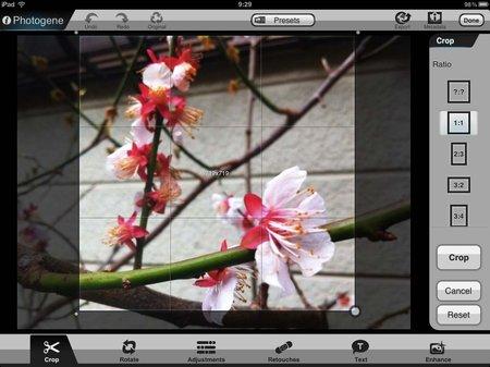 app_photo_photogene_for_ipad_3.jpg