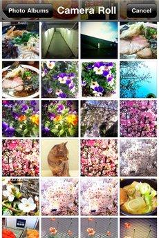 app_photo_shakeitphoto_9.jpg