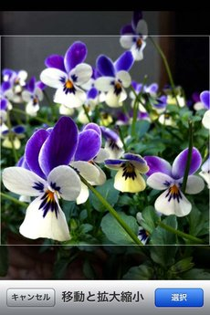 app_photo_qbro_17.jpg
